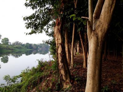 ไร่สวน 4500000 จันทบุรี มะขาม ท่าหลวง