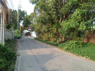 ที่ดิน 16252000 กรุงเทพมหานคร เขตลาดพร้าว ลาดพร้าว