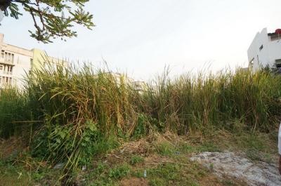 ที่ดิน 9000000 กรุงเทพมหานคร เขตลาดพร้าว ลาดพร้าว