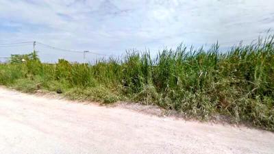 ที่ดิน 5000000 กรุงเทพมหานคร เขตลาดกระบัง คลองสามประเวศ