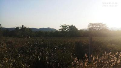 ที่ดิน 950000 ประจวบคีรีขันธ์ ปราณบุรี หนองตาแต้ม