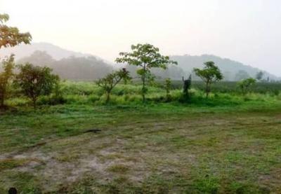ที่ดิน 2250000 อุทัยธานี บ้านไร่ ห้วยแห้ง