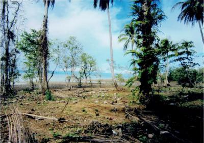ที่ดิน 4000000 ตราด กิ่งอำเภอเกาะช้าง เกาะช้าง