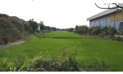 ที่ดิน 4548000 นนทบุรี ไทรน้อย ไทรน้อย