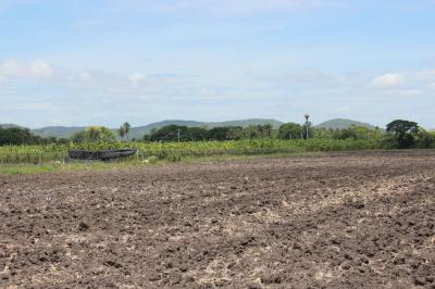 ไร่สวน 9300000 สุพรรณบุรี อู่ทอง พลับพลาไชย