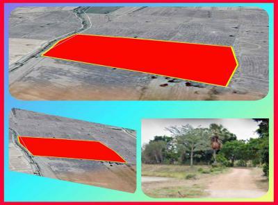 ที่ดิน 78500 ลพบุรี โคกสำโรง โคกสำโรง