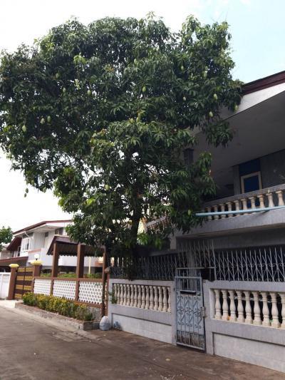 บ้านเดี่ยว 3900000 กรุงเทพมหานคร เขตคันนายาว คันนายาว