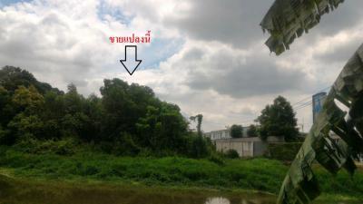 ที่ดิน 64120000 ปทุมธานี ธัญบุรี ประชาธิปัตย์