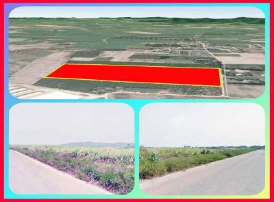 ที่ดิน 150000 กาญจนบุรี ท่าม่วง หนองตากยา