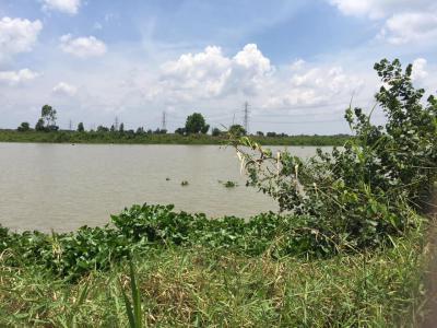 ที่ดิน 4500000 ฉะเชิงเทรา บางน้ำเปรี้ยว บางขนาก