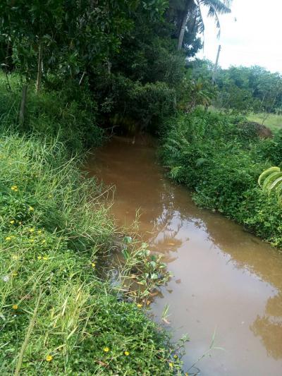 ที่ดิน 3456000 จันทบุรี เมืองจันทบุรี ท่าช้าง