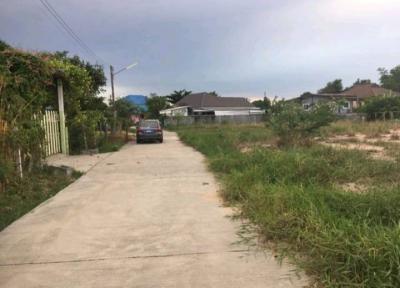 ที่ดิน 1250000 ชลบุรี พนัสนิคม บ้านเซิด