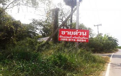 ที่ดิน 110000000 ราชบุรี บางแพ บางแพ
