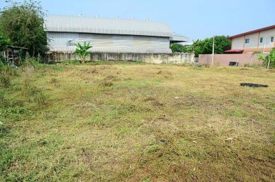 ที่ดิน 25080000 กรุงเทพมหานคร เขตบางกะปิ คลองจั่น