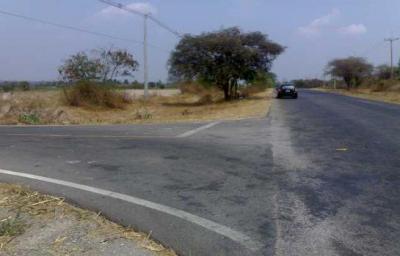 ที่ดิน 5000000 กาญจนบุรี ท่าม่วง พังตรุ