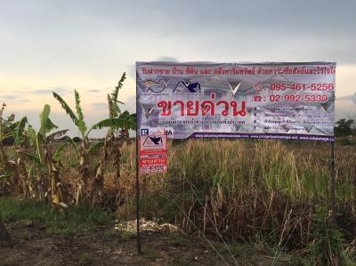 ที่ดิน 137130000 กรุงเทพมหานคร เขตลาดกระบัง ทับยาว