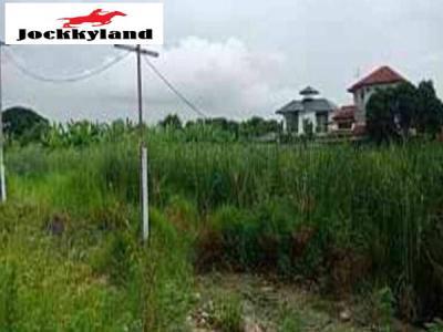 ที่ดิน 29484000 กรุงเทพมหานคร เขตประเวศ ดอกไม้