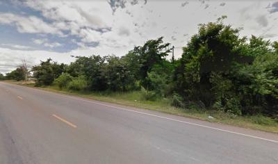 ที่ดิน 42863525 ลำปาง เมืองลำปาง ชมพู