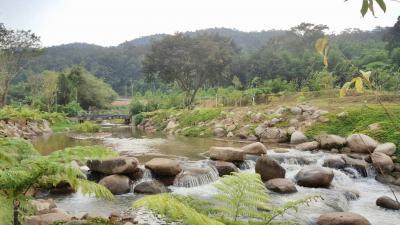 รีสอร์ท 60000000 เชียงใหม่ ดอยสะเก็ด ป่าเมี่ยง