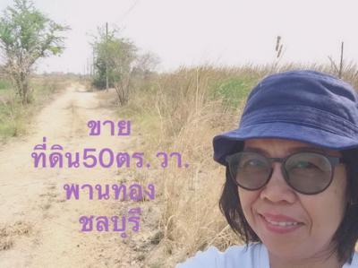 ที่ดิน 300000 ชลบุรี พานทอง มาบโป่ง