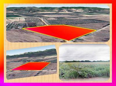 ที่ดิน 385000 สระบุรี เฉลิมพระเกียรติ พุแค