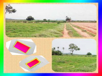 ที่ดิน 150000 กาญจนบุรี ท่าม่วง รางสาลี่