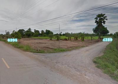 ที่ดิน 350000 ชัยนาท สรรคบุรี