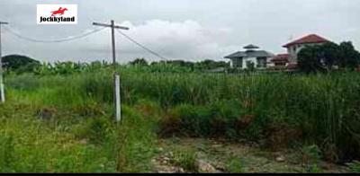 ที่ดิน 28728000 กรุงเทพมหานคร เขตประเวศ ดอกไม้