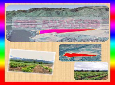 ที่ดิน 580000 กาญจนบุรี ไทรโยค วังกระแจะ