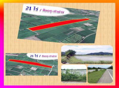 ที่ดิน 238000 กาญจนบุรี ท่าม่วง พังตรุ