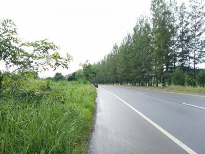 ที่ดิน 30000000 จันทบุรี เมืองจันทบุรี ท่าช้าง