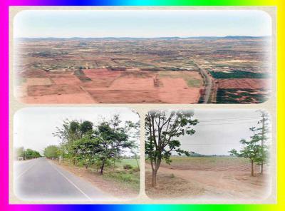 ที่ดิน 140000 กาญจนบุรี เลาขวัญ หนองนกแก้ว