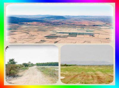 ที่ดิน 150000 กาญจนบุรี ห้วยกระเจา วังไผ่