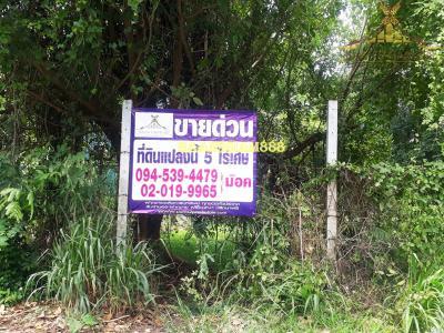 ที่ดิน 94000000 นนทบุรี บางบัวทอง บางรักพัฒนา