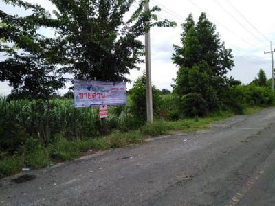 ที่ดิน 10947625 ปทุมธานี ลำลูกกา คูคต