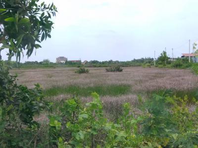 ที่ดิน 8304000 จันทบุรี เมืองจันทบุรี บางกะจะ
