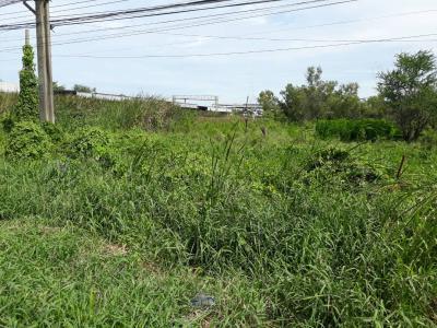 ที่ดิน 0 กรุงเทพมหานคร เขตหนองจอก ลำผักชี