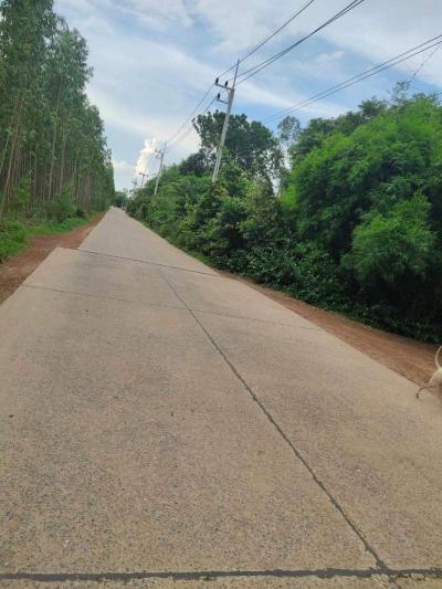 ที่ดิน 2700000 ปราจีนบุรี ศรีมหาโพธิ ศรีมหาโพธิ