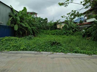 ที่ดิน 4500000 กรุงเทพมหานคร เขตประเวศ ดอกไม้