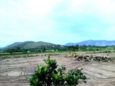 ที่ดิน 480000 สุพรรณบุรี ด่านช้าง นิคมกระเสียว