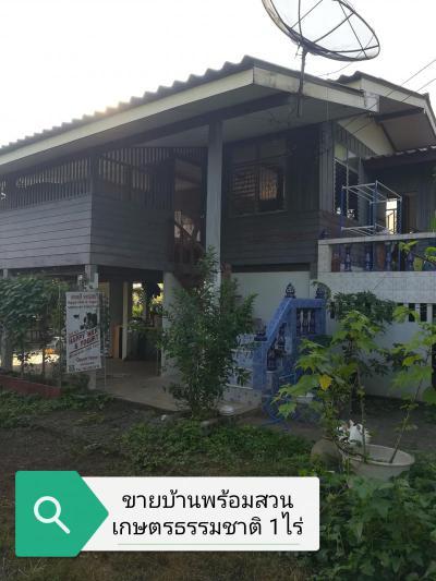 บ้านพร้อมที่ดิน 1200000 ปราจีนบุรี กบินทร์บุรี