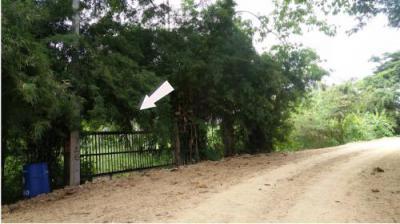 ที่ดิน 11538450 ประจวบคีรีขันธ์ กุยบุรี สามกระทาย