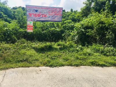 ที่ดิน 3000000 ลพบุรี เมืองลพบุรี ทะเลชุบศร