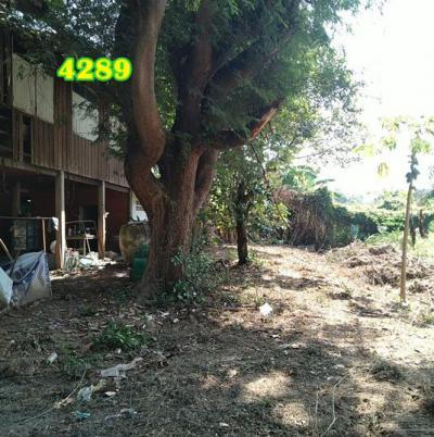 บ้านพร้อมที่ดิน 800000 ชัยนาท เมืองชัยนาท ชัยนาท