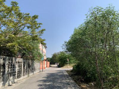 ที่ดิน 10850000 ชลบุรี เมืองชลบุรี บ้านสวน