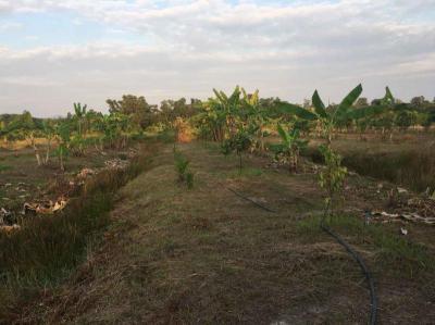 ที่ดิน 420000 จันทบุรี ท่าใหม่ โขมง