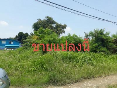 ที่ดิน 15950000 กรุงเทพมหานคร เขตพระโขนง บางจาก