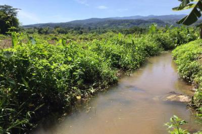 ที่ดิน 1000000 เชียงใหม่ แม่แตง สันป่ายาง