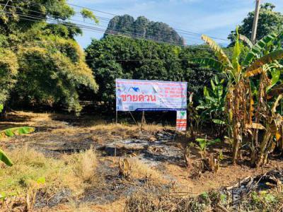 ที่ดิน 3000000 สระบุรี พระพุทธบาท พุคำจาน