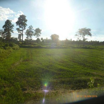 ที่ดิน 10000000 บุรีรัมย์ เมืองบุรีรัมย์ สวายจีก